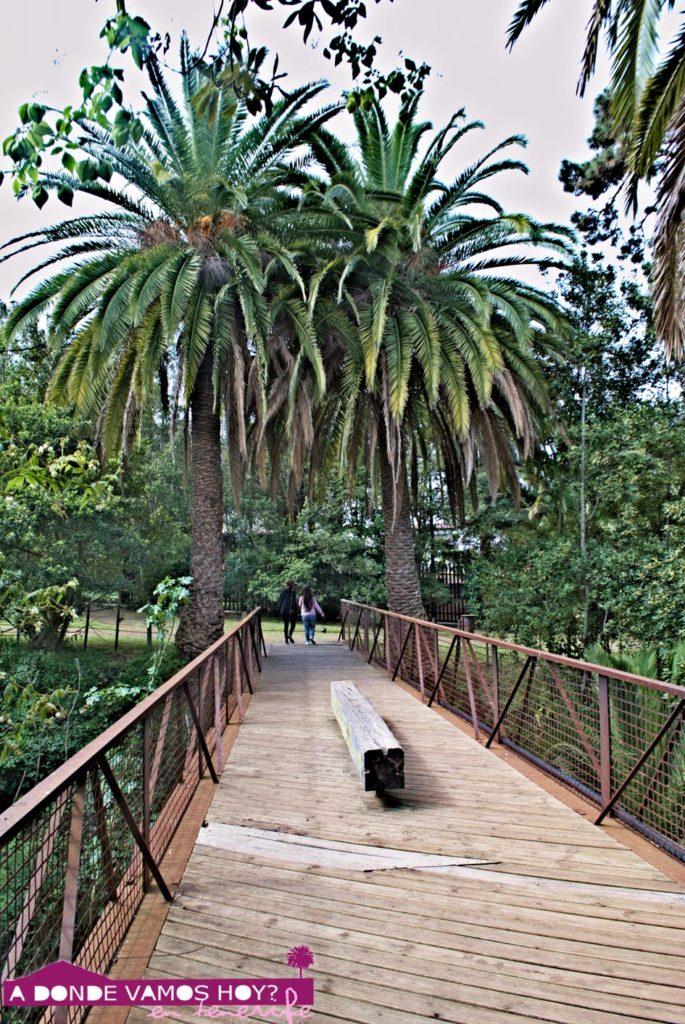 Puente Parque Hamilton
