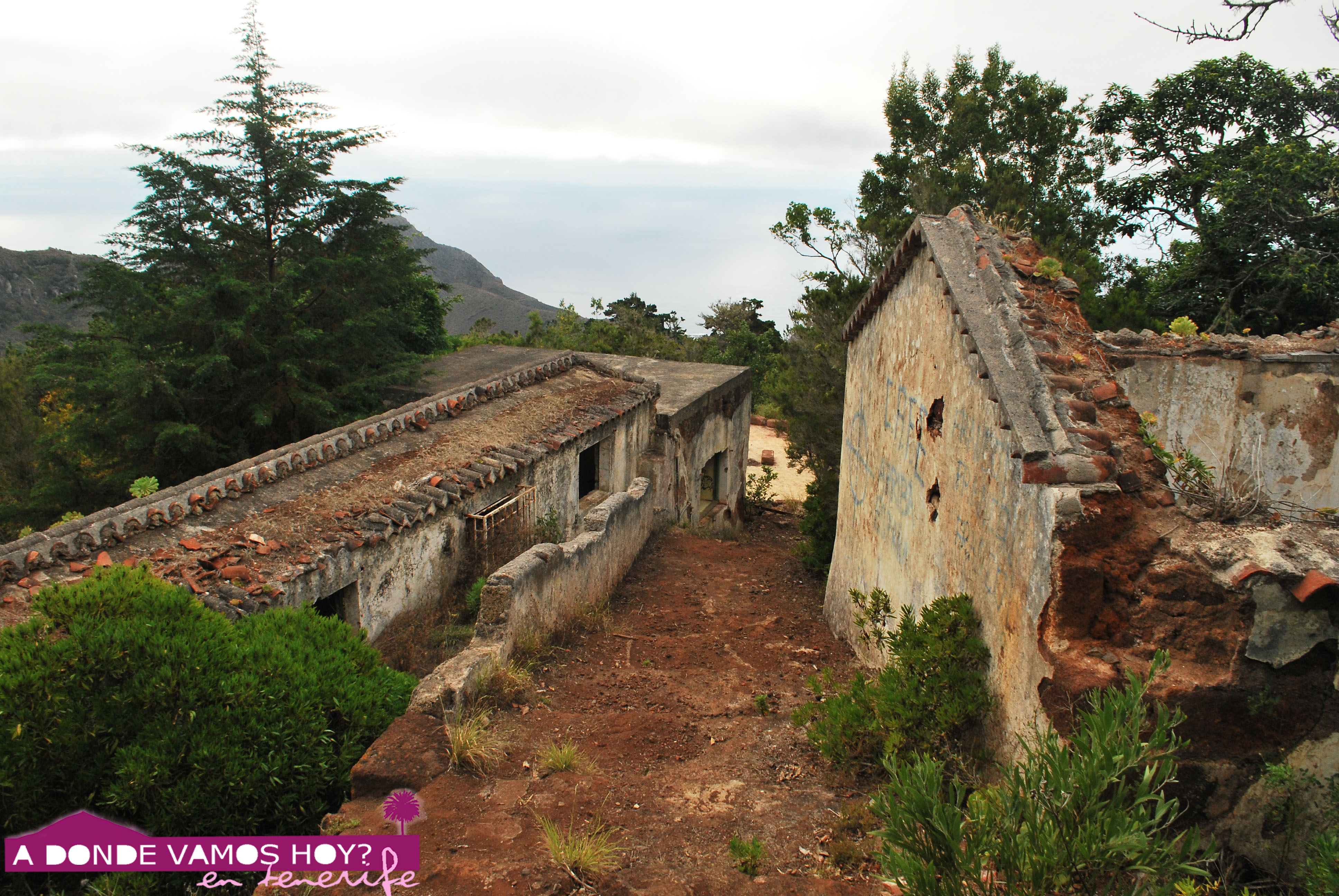 10 lugares abandonados de tenerife a d nde vamos hoy - Aromatizantes naturales para la casa ...