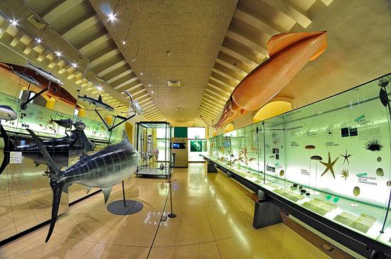 Sala-Biologia-marina