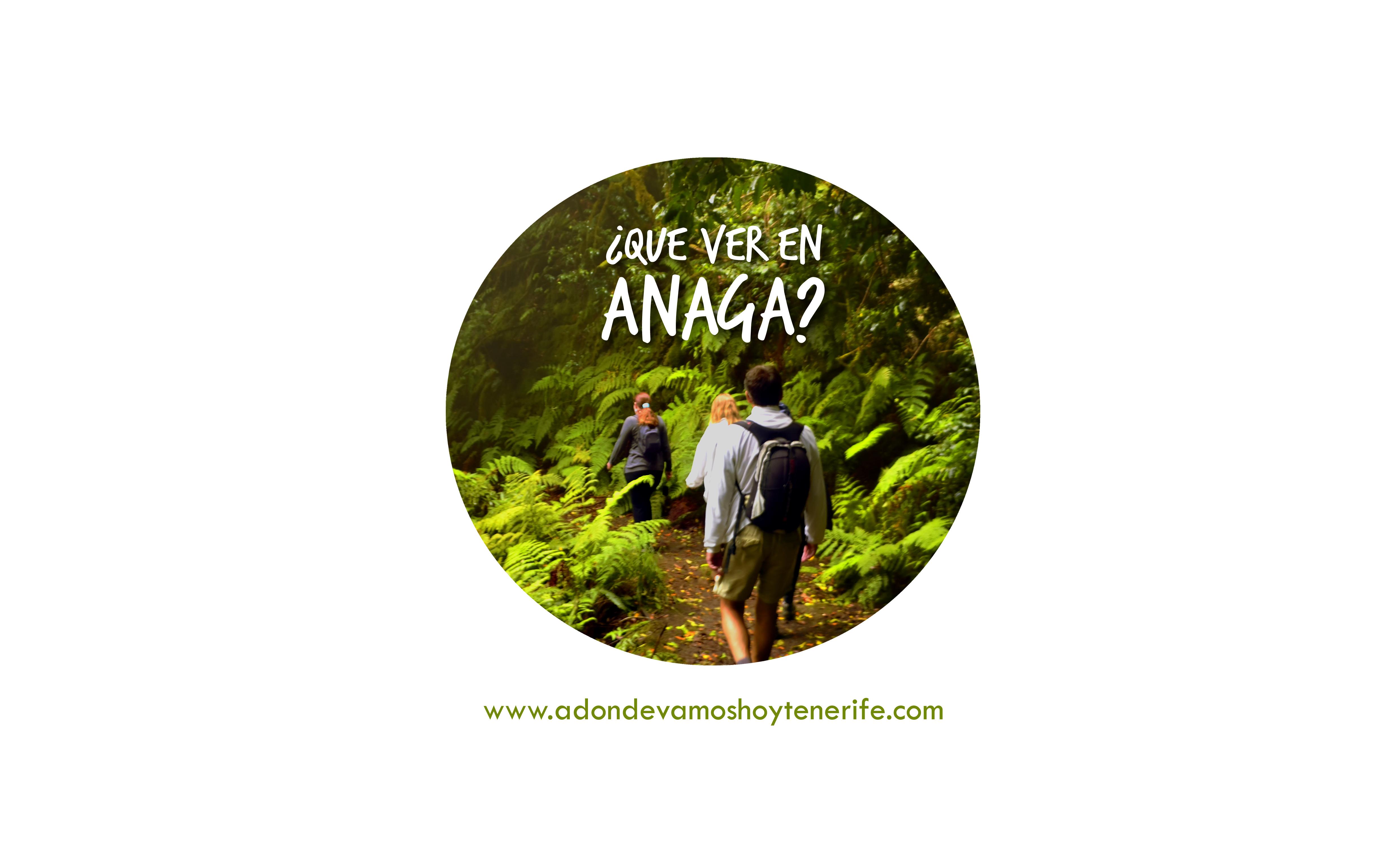 ¿Qué ver en Anaga?