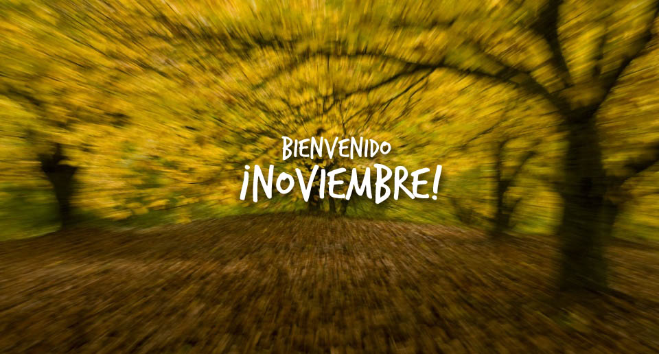 noviembre-copia